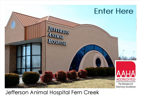 Jefferson Animal Hospital Fern Creek
