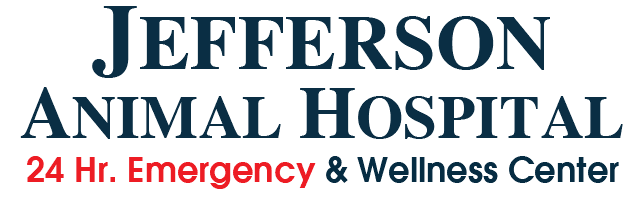 News and Events at Jefferson Animal Hospital