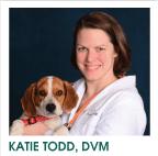 Katie Todd, DVM