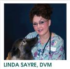 Linda Sayre, DVM