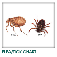 Flea, Tick and Heartworm Chart