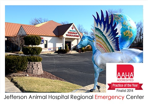 Jefferson Animal Hospital Regional Emergency Center