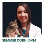 Summer Dorn, DVM