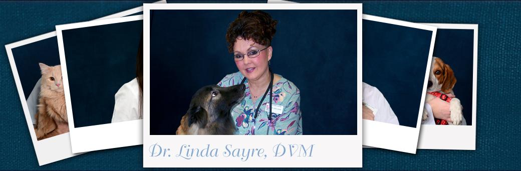 Linda Sayre, Veterinarian