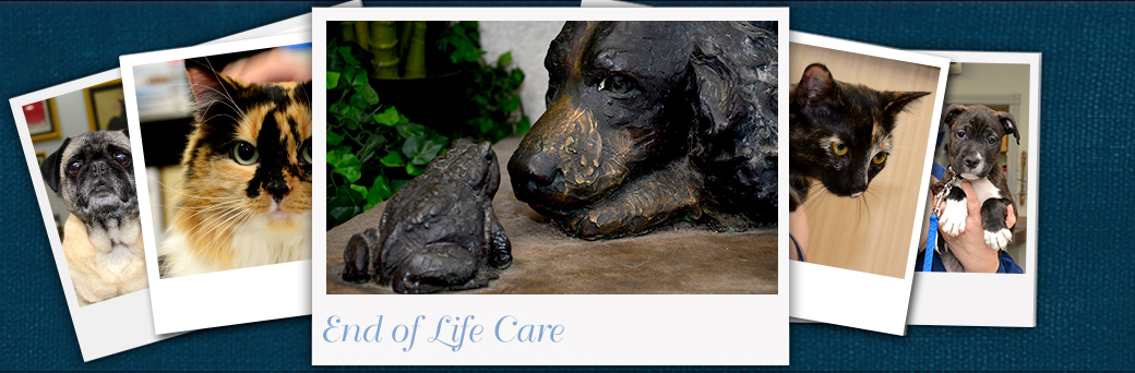 Jefferson Animal Hospital Emergency End of Life Care