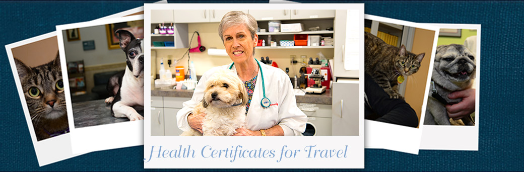 Jefferson Animal Hospital Emergency Health Certificates for Travel