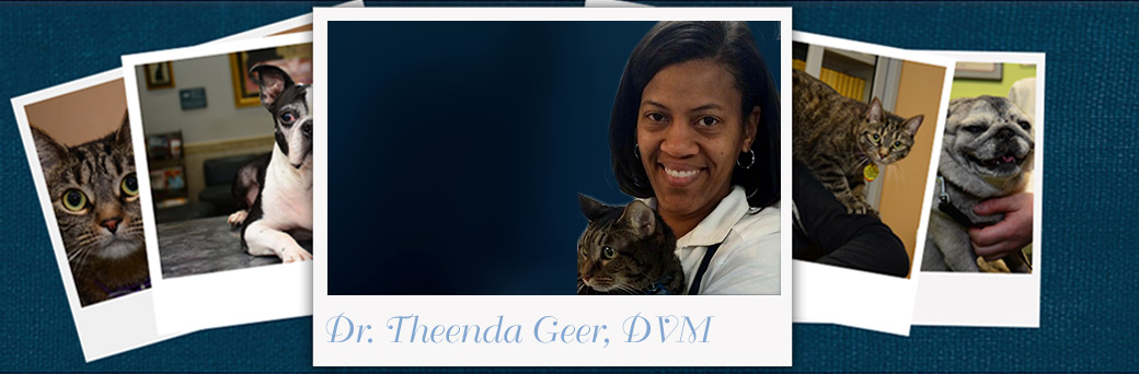 Theenda Greer, Veterinarian