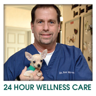 24hr Wellness Care