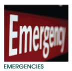 24Hr Pet Emergencies