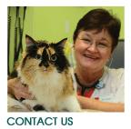 Contact Jefferson Animal Hospital