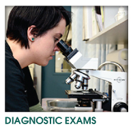 Diagnostic Exams