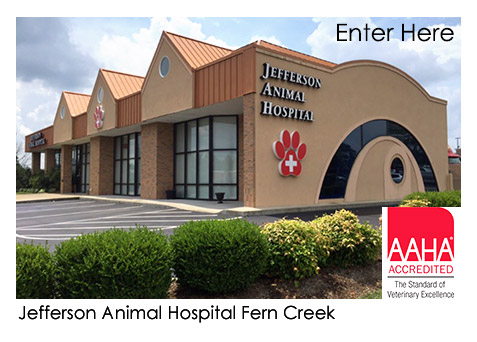 Jefferson Animal Hospitals, Veterinarians in Louisville KY | 24 HR