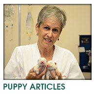 Puppy Articles