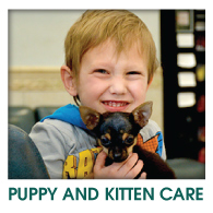 PUPPY & KITTEN CARE