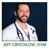 Jeff Critchlow, DVM