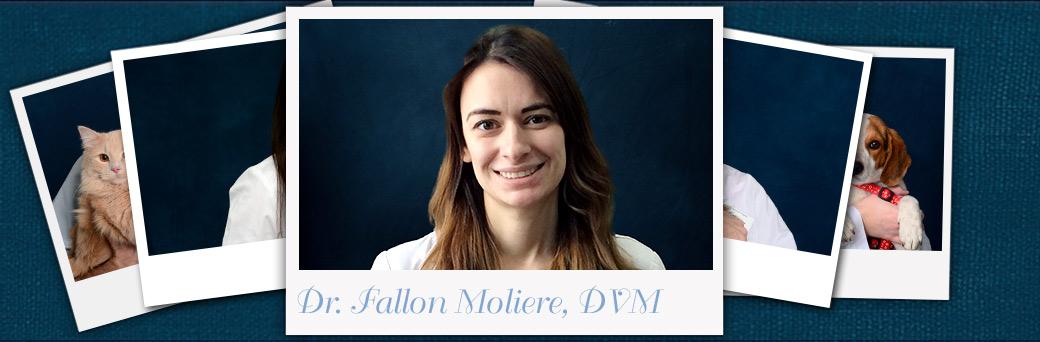 Fallon Moliere, Veterinarian