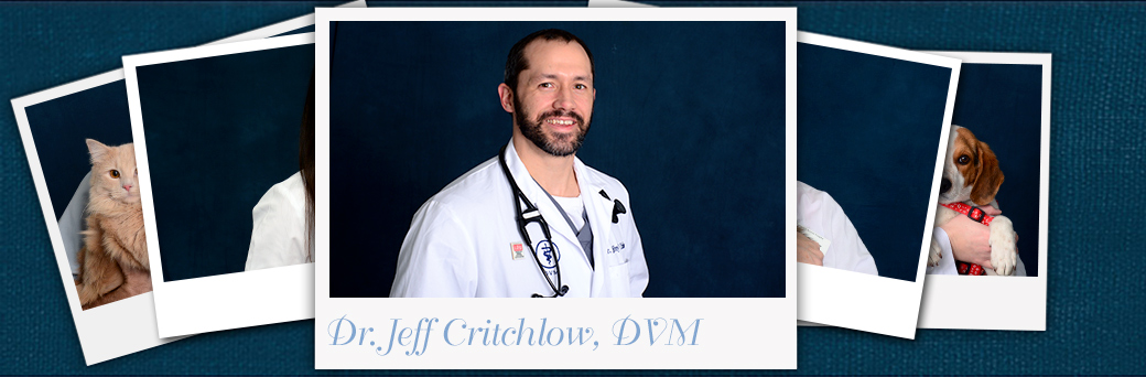 Jeff Critchlow, Veterinarian