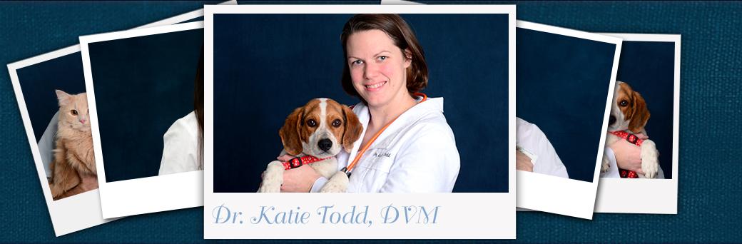 Katie Tood, Veterinarian
