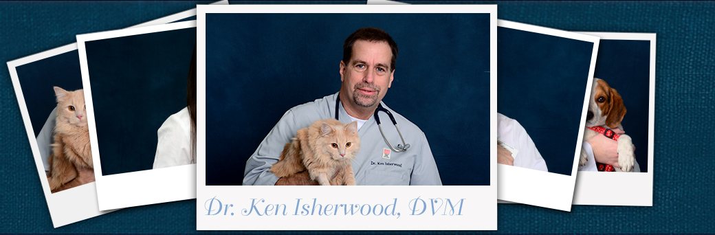 Ken Isherwood, Veterinarian