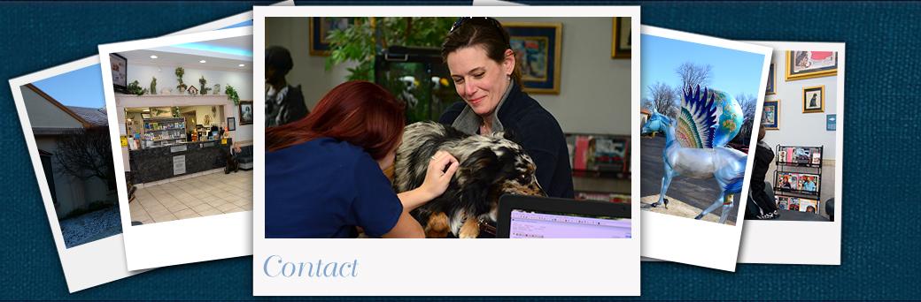 Jefferson Animal Hospital Emergency Contact