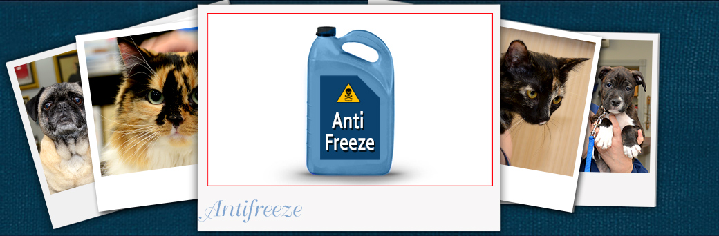 Jefferson Emergency Outer Loop Antifreeze