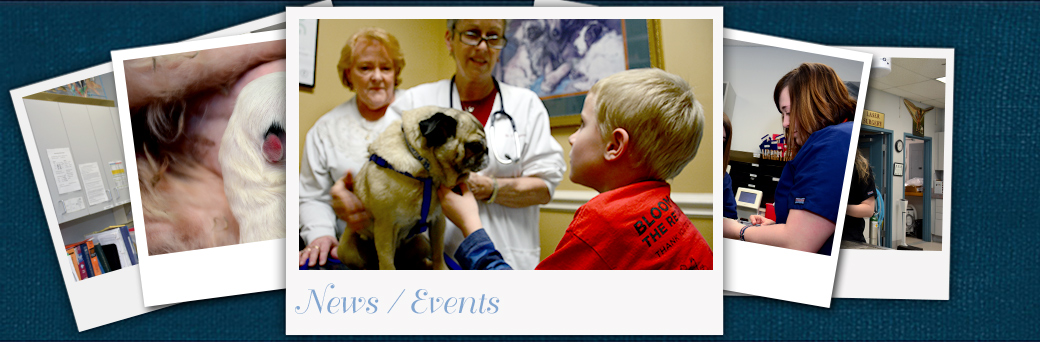 Jefferson Animal Hospital Outer Loop Events