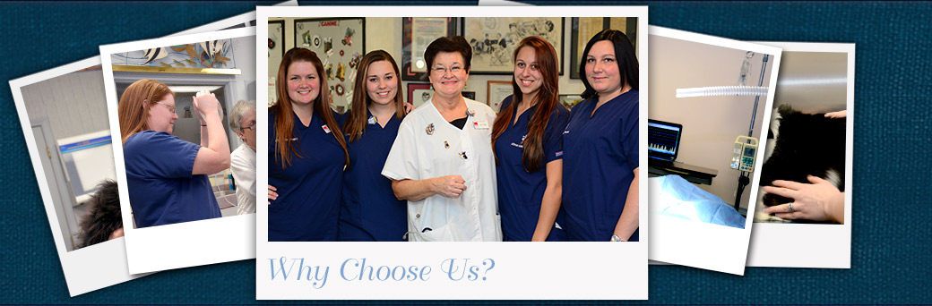 Why Choose Jefferson Animal Hospital