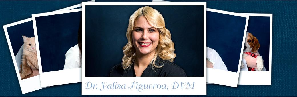 Yalisa Figueroa, Veterinarian